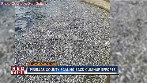 Pinellas County scaling back red tide cleanup efforts