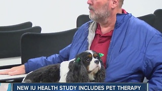 IU Health study uses pet therapy to help brain tumor patients - Video