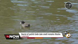 What's that smell at Lindo Lake in Lakeside? - Video