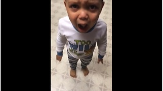 Kid has temper tantrum over mashed potatoes - Video
