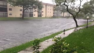 Florida resident films flooding and wreckage after Hurricane Irma - Video