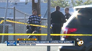 Police investigating Mountain View homicide