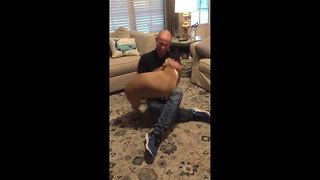 Over-excited pitbull greets owner after return from six-month deployment