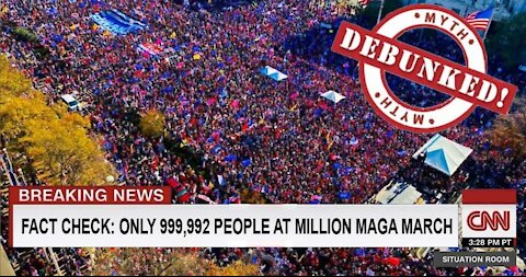 #MillionMAGAMarch Washington, D.C. November 14th, 2020 - Stop the Steal!