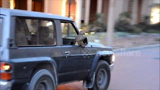 Baby monkey riding on a Nissan Patrol in Qatar - Video