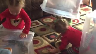 Three Kids Don't Want to Play With Toys, Just The Boxes
