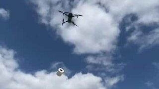 Guy delivers toilet paper to buddy using drone