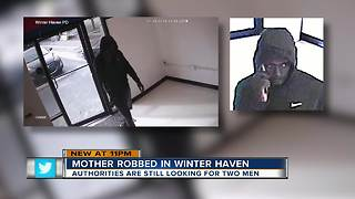 Winter Haven mom robbed while at park with child - Video