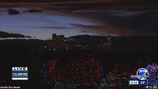 Zoo Lights gives visitors the chance to see lights, animals - Video