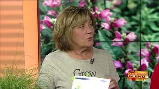 Planting Low Maintenance Perennials in Your Yard - Video