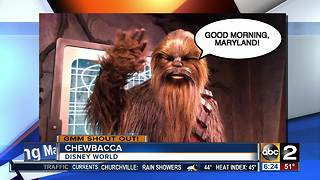 Good morning from Chewbacca! - Video