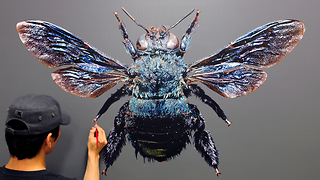 Artist creates truly realistic insect portrait - Video
