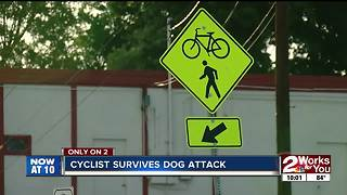 Cyclist survives dog attack - Video