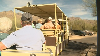 Sabino shuttles could go electric - Video
