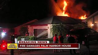 Overnight fire damages home in Palm Harbor - Video