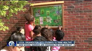 school gardens get kids in touch with their food - Video