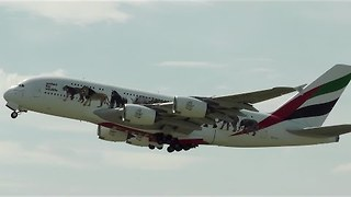 Emirates Airplane Carries Message Against Illegal Wildlife Trade - Video