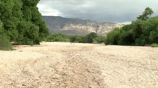 49ers Country Club prepares for Monsoon - Video