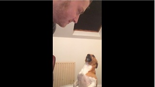 Jealous dog wants all the kisses for himself