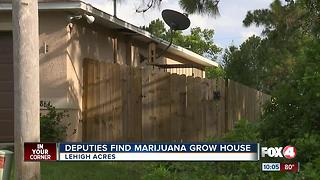 loud buzzing sound leads deputy to a marijuana grow house - Video