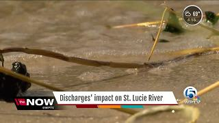 Discharges' impact on St. Lucie River