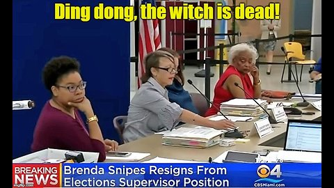 Brenda Snipes resigns after botched Florida recount