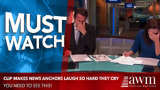 Watch The Clip That Had Anchors Laughing So Hard They Couldn't Continue The News [Video] - Video
