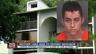 Mother uses gun to defend neighbor - Video