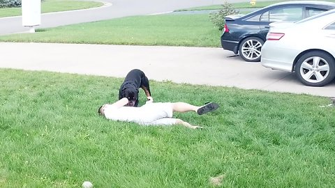 Check out this Rottweiler's reaction when his owner pretends to faint!
