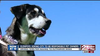 Glenpool asking city to be responsible pet owners - Video