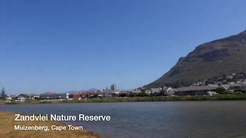 SOUTH AFRICA - Cape Town - Cape Town International Kite Festival (Video) (ZMZ)