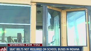 Seat Belts not required on school buses in Indiana - Video