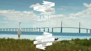 St. Petersburg, Florida - Video