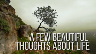 Beautiful Thoughts about Life - Video