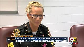 Police looking for man who burned cat - Video