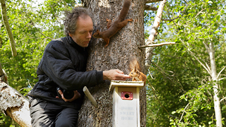 Photographer in tree with squirrels - Video