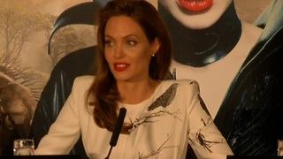 Angelina Jolie to focus on directing side of business - Video