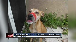 Trial of man accused of taping dog's mouth shut to begin Tuesday