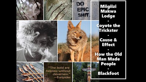 Miigiizi Makwa 8th Fire Lodge: How the Old Man Made People - A Blackfoot Story. #CoyoteMedicine