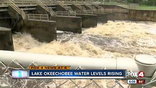 Lake Okeechobee levels rising - Video