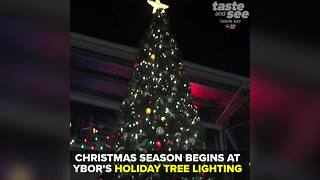 Holiday Tree Lighting in Ybor City kicks off Tampa's Christmas season | Taste and See Tampa Bay - Video