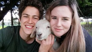 That's baaa'king mad – Pet lamb acts like pooch around family home