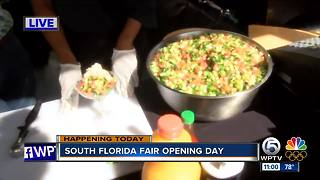 South Florida Fair offers plenty of seafood options - Video