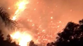 Fast-Moving Wildfires Engulf Homes in Northern California - Video