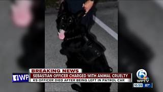 Sebastian police officer charged in K9's death - Video