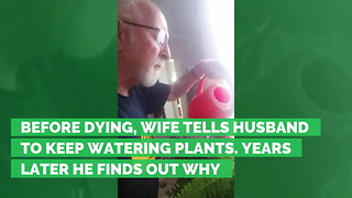 Before Dying, Wife Tells Husband to Keep Watering Plants. Years Later He Finds Out Why - Video