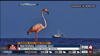 The top places in Southwest Florida to take nature photos - Video