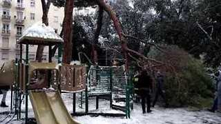 Tree Crashes Down on Playground as Children Play in Rare Roman Snow - Video