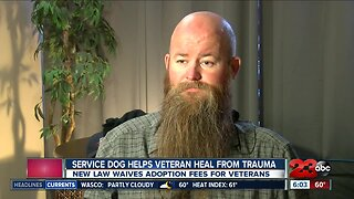 Service dog helps veteran deal with PTSD