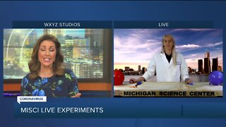 Live Science Experiment with MiSci